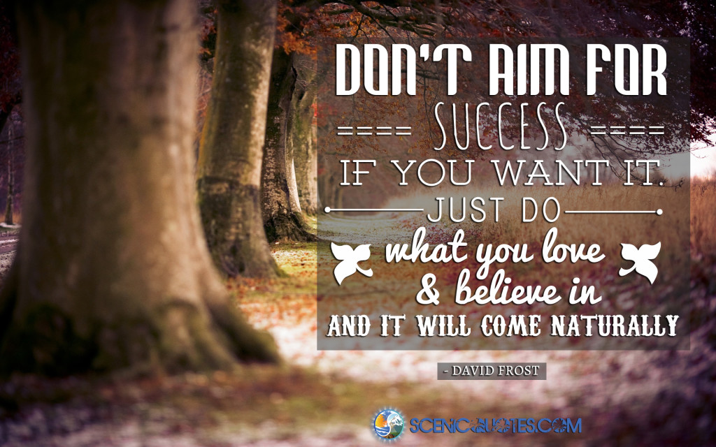 Success quote from scenicquotes.com