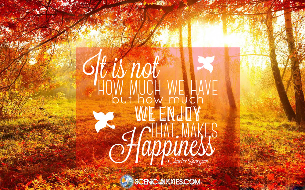 Happiness quote by scenicquotes.com